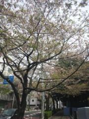 佐藤太三夫 公式ブログ/日差しが 画像1