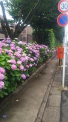 佐藤太三夫 公式ブログ/梅雨入りしました 画像3