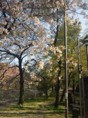 佐藤太三夫 公式ブログ/少しずつ 画像3