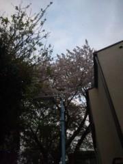 佐藤太三夫 公式ブログ/ここにも 画像2