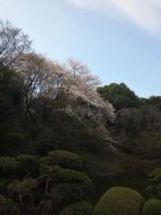 佐藤太三夫 公式ブログ/桜 画像2