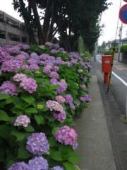 佐藤太三夫 公式ブログ/色濃くなって 画像1