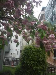 佐藤太三夫 公式ブログ/今日も雨 画像1