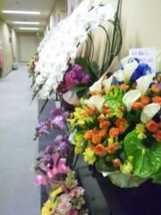 佐藤太三夫 公式ブログ/花が一杯 画像1