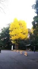 佐藤太三夫 公式ブログ/綺麗と黄色です。 画像3