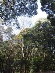 佐藤太三夫 公式ブログ/今日は遠的 画像3