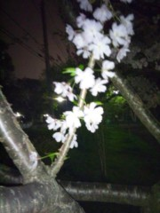 佐藤太三夫 公式ブログ/いいな このまま 画像1