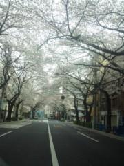 佐藤太三夫 公式ブログ/中野 桜 2 画像1