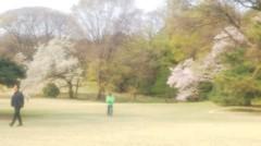 佐藤太三夫 公式ブログ/明治神宮 画像3