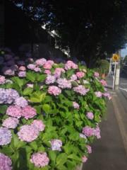 佐藤太三夫 公式ブログ/ 暑い(;´д`)ゞ! 画像2
