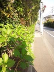 佐藤太三夫 公式ブログ/駅に向かう途中 画像1
