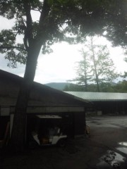 佐藤太三夫 公式ブログ/今日は晴れそうです 画像2
