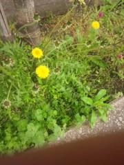 佐藤太三夫 公式ブログ/春になると 画像2