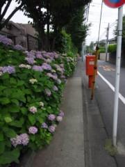 佐藤太三夫 公式ブログ/満開 画像2