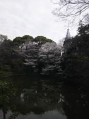 佐藤太三夫 公式ブログ/桜 画像1