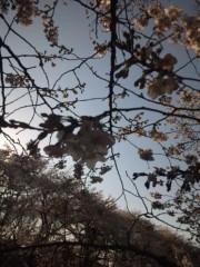 佐藤太三夫 公式ブログ/川沿い 画像3