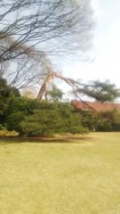佐藤太三夫 公式ブログ/地面に着いてる桜の木と松の木 画像2