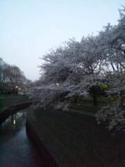 佐藤太三夫 公式ブログ/夕暮れ 画像1