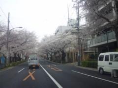 佐藤太三夫 公式ブログ/中野 桜 2 画像2