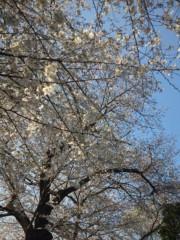 佐藤太三夫 公式ブログ/川沿い 画像2