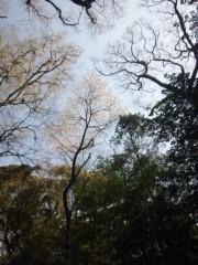 佐藤太三夫 公式ブログ/高いどこにも 画像1