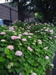佐藤太三夫 公式ブログ/台風雨 画像2
