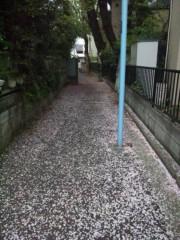 佐藤太三夫 公式ブログ/ここにも 画像3