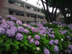 佐藤太三夫 公式ブログ/日々綺麗に 画像1