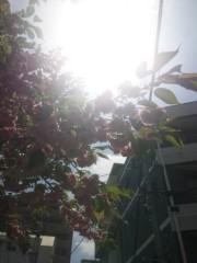 佐藤太三夫 公式ブログ/天気いい 画像1