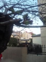佐藤太三夫 公式ブログ/代々木にある 画像1