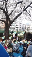 彩羽真矢 公式ブログ/お花見! 画像2