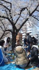 彩羽真矢 公式ブログ/お花見! 画像1