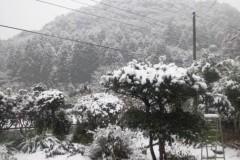 石原幸弘 公式ブログ/2010-12-31 11:54:15 画像1
