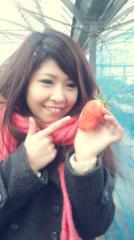 田中麻衣 公式ブログ/いちごちゃん 画像2