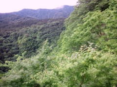 明日香 公式ブログ/おやつは300円まで!! 画像1