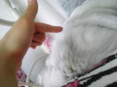 明日香 公式ブログ/大人しく寝る人 画像1