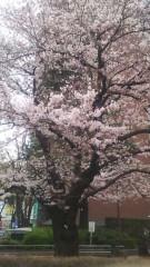 明日香 公式ブログ/春春 画像3
