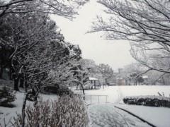 明日香 公式ブログ/雪こんこん 画像1