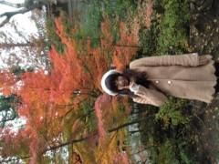 明日香 公式ブログ/ほっこり紅葉 画像1
