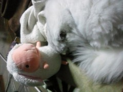 明日香 公式ブログ/おやすみなさい 画像2