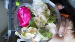 北ともみ 公式ブログ/2012-02-02 16:23:26 画像1