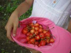川瀬富美子 公式ブログ/すっきりリフレッシュは 無農薬さくらんぼ 画像2