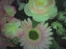 川瀬富美子 公式ブログ/新郎からのプレゼント・・・リスケットブーケ  画像1