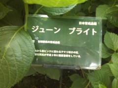 川瀬富美子 公式ブログ/仕事帰りに・・・ちょっと寄り道 画像1