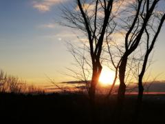 川瀬富美子 公式ブログ/新年おめでとうございます 画像3