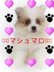 中川紗耶加 公式ブログ/☆生まれたての☆ 画像1