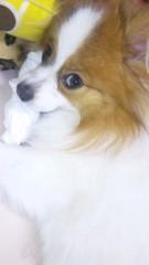 中川紗耶加 公式ブログ/一歳のお誕生日♪♪♪ 画像2