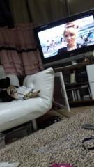 中川紗耶加 公式ブログ/TV出演☆情報 画像1