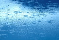 池田昌子 公式ブログ/雨が  画像1