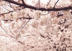 池田昌子 公式ブログ/嬉しくて嬉しくて♪  画像1